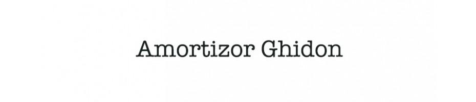 Amortizor Ghidon