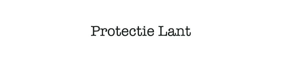 Protectie lant