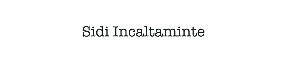 Sidi Incaltaminte