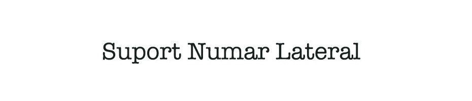 Suport Numar Lateral