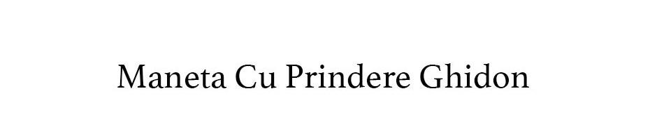 Maneta Cu Prindere