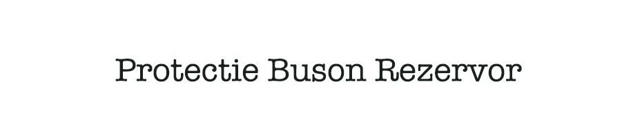Protectie Buson Rezervor