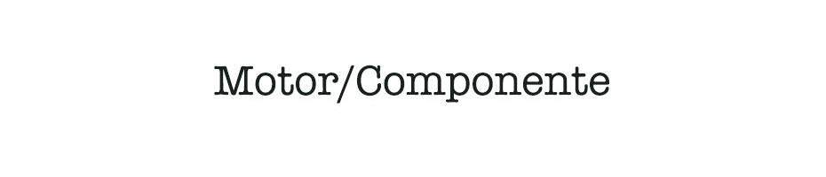 Motor / Componente